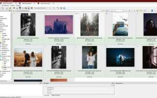 Бесплатные программы для просмотра фото и управления изображениями