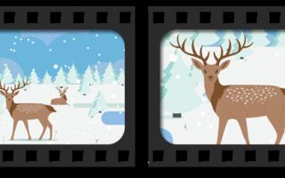 Как приблизить фрагмент в видео: увеличение выбранной области, объекта