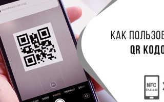Оплата по QR коду: как отсканировать его и сделать платеж с телефона