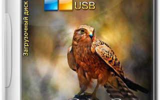 Создание своей сборки Windows с помощью Live-диска by Sergei Strelec. Установка Windows с Live-диска Стрельца
