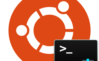Установка операционной системы Ubuntu (версия 16.04) на компьютер. Создание SSH сервера на базе Ubuntu и подключение к нему