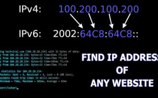 Как узнать IP адрес сайта в Интернете
