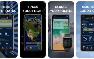 Как следить за самолетами по номеру рейса онлайн